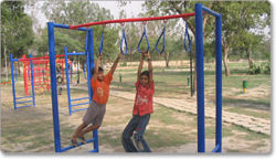 Swinging Loop Rung ( Fitness )
