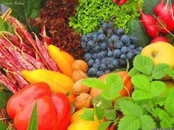 Nutritional Evaluation Testing Service