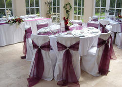 Chair Cover and Bow