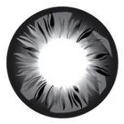 Feather Gray Color Contact Lens
