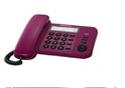 Panasonic Ts-520 Memory Phone
