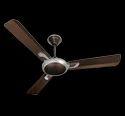 Areole Fan