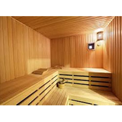 Customized Sauna Room