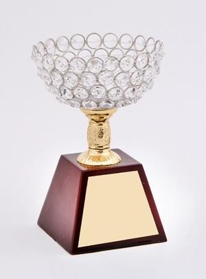 Gold Plated Crystal Trophy