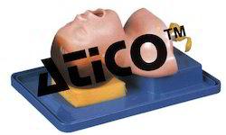 The Model of Newborn Intubation
