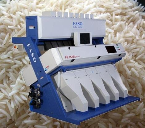 Steam Rice Sorting Machines