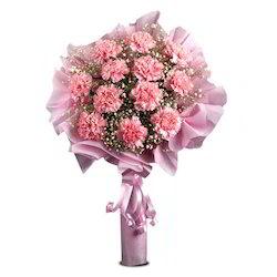 pink-wink-vl