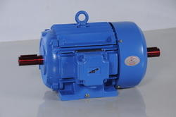 Double shaft motor double shaft electric motors for Double ended shaft electric motor