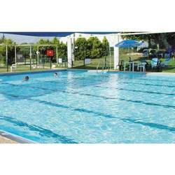swimming pool purification and disinfection