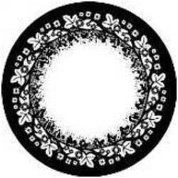 Gray Veils Color Contact Lens