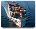 Freight Forwarding-Sea Fright