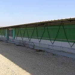 Poultry Farm Curtain