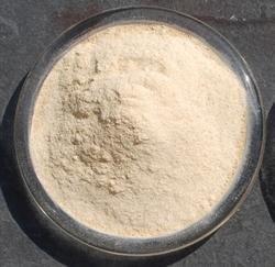 Boswellia Serrata Extracts