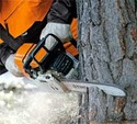 Durable, Powerful And Robust - Petrol Chain Saws