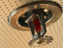 Industrial Fire Sprinkler System