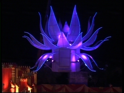 Lotus on Crane