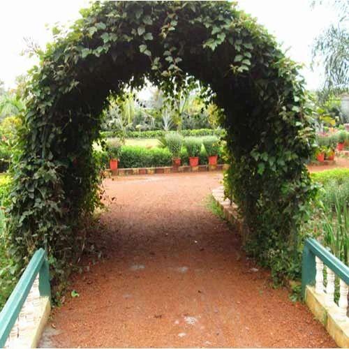 Green Landscapes & Garden Landscapes - Green Landscapes Manufacturer from Serampore