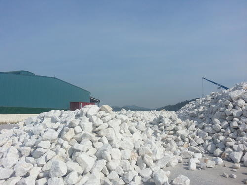 Natural Calcium Carbonate Vietnam
