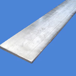 Stainless Steel 317L Flat