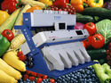Fruit and Vegetable Sorting Machines