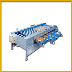 Potato Crisps Manufacturing Machines
