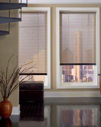 Designer Roller Shade Contemporary Office Blinds