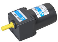 6W AC Induction Gear Motor