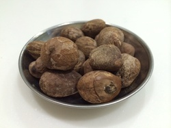Shea Nuts for Cosmetic Industries