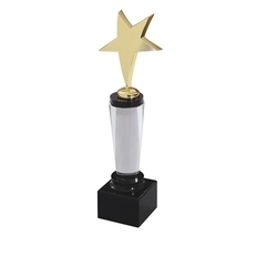 Acrylic Star Trophies