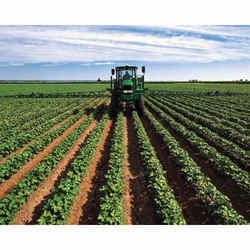 Yield and Better Quality Crops Ecozyme YB