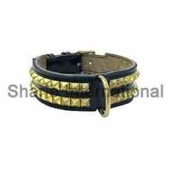 brown studded dog collar