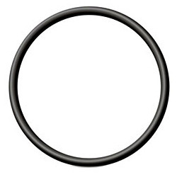 Elastomers O Ring