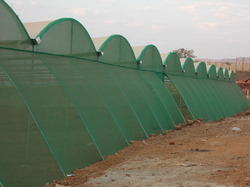 Tunnel Type Shade Net Houses