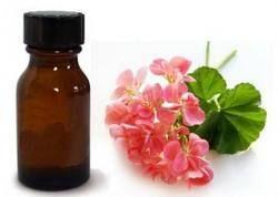 Geranium Essential  Oil For Flavor And Fragrances