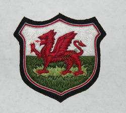 Welsh Dragoon B/B Badges