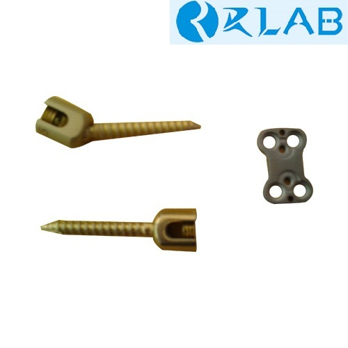 Pedicle Screw & Cervical Plate