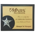 Wooden Trophy with Star