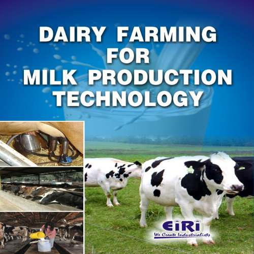 Dairy Farming in India Project Report on Project Report of Dairy