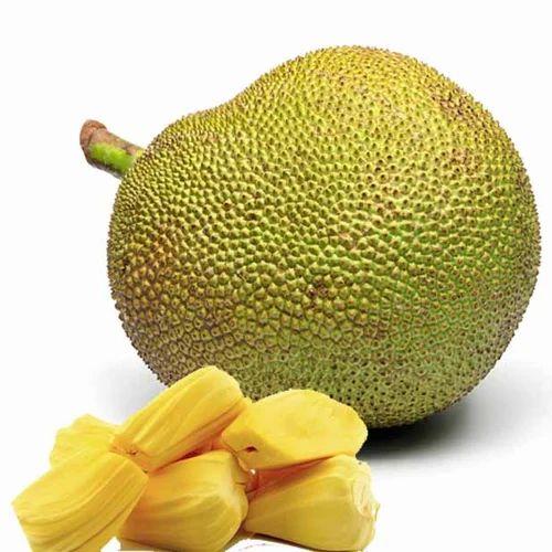 jackfruit-500x500.jpg