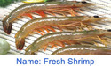Fresh Shrimp Fish