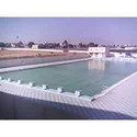 Swimming Pool Plant