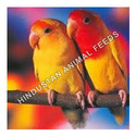 Love Bird Feed
