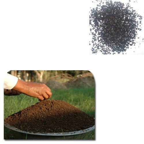 Seaweed Extract Based Organic Fertilizer Input
