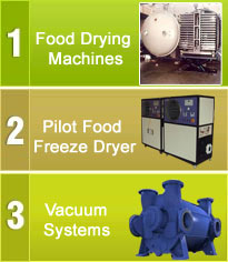 Freeze Drying Systems Pvt. Ltd.