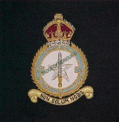 RAF 81 SQN. Blazer Badge