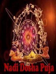 Nadi Dosh Nivaran Puja
