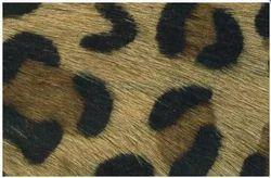 Spot Design Leather Cord