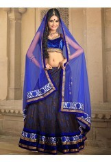 Fascinating Blue Lehenga Choli