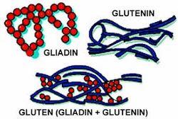 real wheat gluten