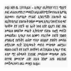 Amharic Language Translation Services